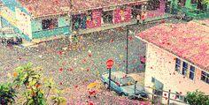 8 million flower petal tsunami