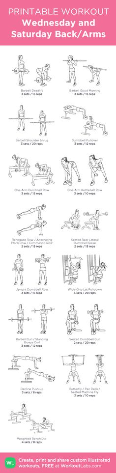 Wednesday and Saturday Back/Arms:my visual workout created at WorkoutLabs.com • Click through to customize and download as a FREE PDF! #customworkout