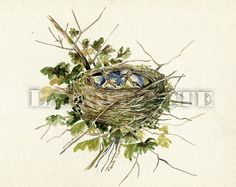 Tits Nest   Framed Original Watercolor  OOAK  L1 by LaLoupiote
