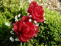 Nicht nur zum Valentinstag ist es schön rote Rosen zu verschenken,auch zu anderen Gelegenheiten ins besondere wenn sie  niemals verwelken...