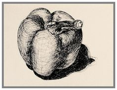 You now have a week to create an observational drawing of a natural form using a biro. Treat your biro like a pencil to produce a range of. Natural Forms Gcse, Natural Form Art, Texture Drawing, Texture Art, Biro Art, Gcse Art Sketchbook, Sketchbook Ideas, Fruits Drawing, Still Life Drawing