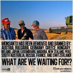 #Truth #GMO