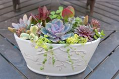 Succulent arrangement in white oval by iDreamOfSucculents on Etsy