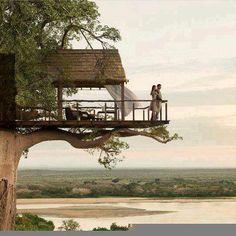 Maison dans les arbres de mes rêves