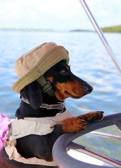 Dachshund FIshing Boat