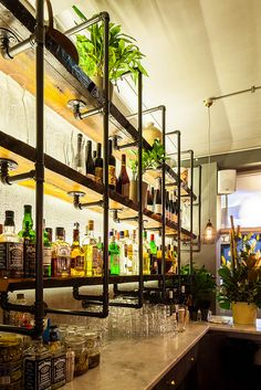 Project - HARTSYARD:Seed - Architizer industrial bar back bar, bottle display - Model Home Interior Design Industrial Style Furniture, Industrial Pipe Shelves, Pipe Furniture, Pipe Shelving, Shelving Ideas, Vintage Industrial, Vintage Bar, Steel Shelving, Industrial Table