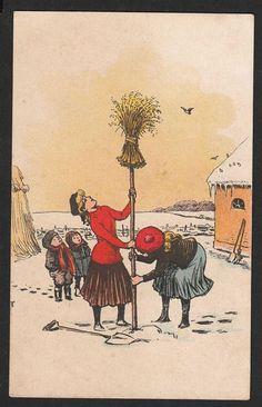 Neg sættes op til fuglene Danmark Postkort Brugt u mærke