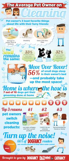 Average Dog Owner Infograph by Derek Moore, via Behance