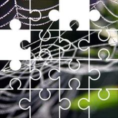 Web Jigsaw Puzzle, 67 Piece Classic.