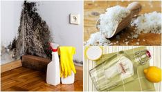 It's easy to get rid of moisture! Meet 6 Natural Solutions - Home Cleaning