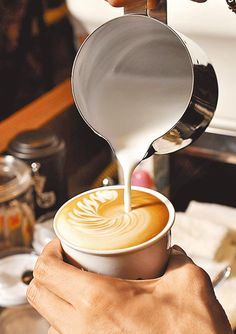 Cursus latte art bij screaming beans €50 #latte #cafecito