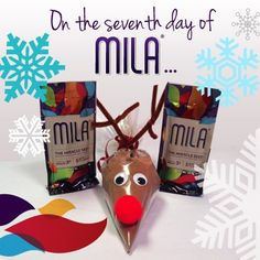 On the seventh day of Mila, make this adorable Mila cocoa reindeer! Get your kids involved and share some holiday joy with their teachers, coaches and friends...and start a conversation about your business!  http://www.mylifemax.net/recipes/mila-cocoa-reindeer