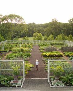 Vegetable Garden Care.  Great site full of information