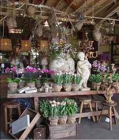 I promise you I& not obsessed with Nurseries, but I couldn& let this one go un-noticed. Rolling Greens Nursery is a beautiful concept, wit. Garden Center Displays, Flower Boutique, Garden Nursery, Flower Market, Flower Shops, Garden Shop, Organic Gardening, Flowers, Gardens