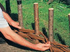 Begin weaving the willow stems or other pliable branches around the. Garden Site, Garden Yard Ideas, Garden Projects, Wattle Fence, Willow Furniture, Willow Garden, Rock Plants, Willow Weaving, Fence Weaving