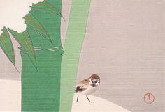神坂雪佳 Kamisaka Sekka 『雪中竹』(1866-1942)