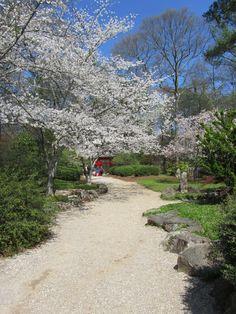 Birmingham Botanical Gardens...Birmingham, Alabama
