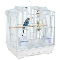 A traditional styled cage for your smaller pet bird. Small Bird Cage, Small Birds, Pet Birds, Parrot Cages, Canary Cage, Birdcages, Budgies, Costa Rica, Birds