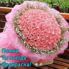 Bouquet of Premium 75 Light Pink Roses - Wrapped in Matching Pink Premium Packing. Exotic Flowers, Colorful Flowers, Beautiful Flowers, Morning Pictures, Good Morning Images, Good Morning Flowers, Morning Rose, Online Florist, Light Pink Rose