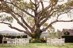 We offer a range of wedding and event styling and decorating services in Byron Bay, Brisbane and Gold Coast. Our new company Hampton Event Hire has opened it's doors to weddings and events offering a unique, contemporary range of hire items. Wedding Reception Design, Wedding Ceremony, Wedding Venues, Tree Wedding, Garden Wedding, Boho Wedding, Brisbane Gold Coast, Byron Bay Weddings, April Wedding