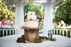 Hand carved wooden stump cake stand. Bobble heads of the Bride and Groom cake topper.