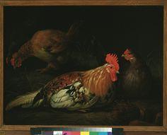 Albert Cuyp, Een haan met drie hennen (a rooster with three hens), 1600-1699 (collection) #franshalsmuseum #rooster #art #painting #albertcuyp