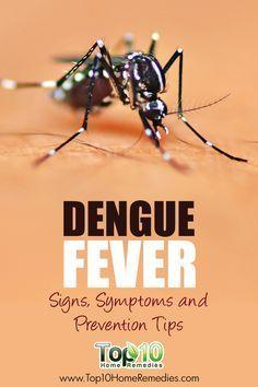 Dengue Fever: Signs & Symptoms.  How to Prevent #Dengue Fever.