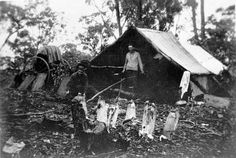 the great depression shanty towns australian photos - Google Search
