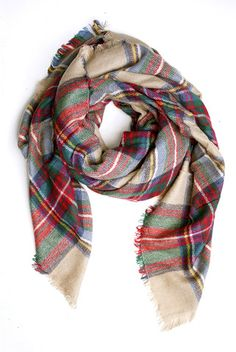 Tartan plaid scarf with frayed edges. Doesn't have to be from this website, but I like the edges of this one. They may have ones like this at Target as well.