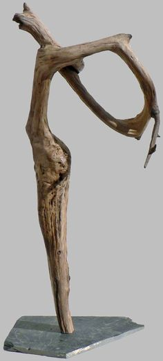 Driftwood schwemmholz bois flott on pinterest for Sculpture murale bois flotte