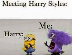 Meeting Harry Styles Meme