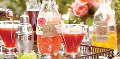 Outdoor Dining - Tableware, Glassware   World Market