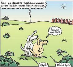 Image from http://vimpir.com/karikatur-bak-butun-buralar-benim-3087-I4.jpg.