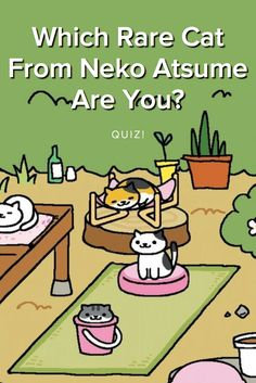 Which rare cat from Neko Atsume are you? take this quiz and find out today! Meowgi, and my momma got Saint Purrtrick. Neko Atsume Kitty Collector, Cat Collector, Little App, Mean Cat, Rare Cats, Baby Memes, Pusheen Cat, Cat Room, Cute Games