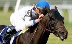 Take Charge Indy to stand in South Korea  https://www.racingvalue.com/take-charge-indy-to-stand-in-south-korea/