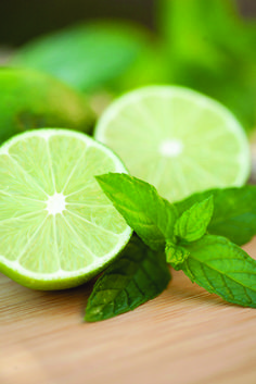 Mondays can be rough; that's why there are fragrances like Mint Leaf & Lime. It has all the refreshing components to wake you up, and keep you going. It may be fall, but we can still dream of cold drinks on warm beaches. Fragrance Notes: Lime zest, mint, sugar, cool water.