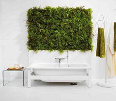 plant wall in bathroom