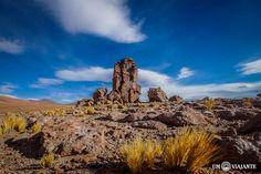 Atacama - Salar de Tara