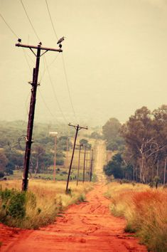 Country Road - After the Rain by Robin Brown, North West Province, South Africa