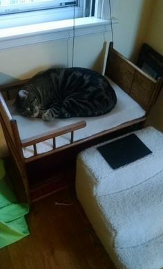 I made a doll bunk bed into a bunk bed for my cats. $5 well spent!