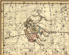GEMINI zodiac map print - Antique Star Map - Professional Reproduction of the Constellation GEMINI- Gemini Star, Gemini And Virgo, Zodiac Signs Gemini, Sagittarius Astrology, Zodiac Horoscope, Tatouage Fibonacci, Zeus Jupiter, Planetary Nebula, Gemini Constellation