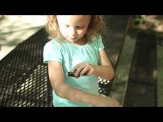 dōTERRA - TerraShield Natural Insect Repellent