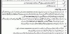 Career Opportunities (Pakistan Civil Aviation Authority)   New Jobs Portal