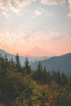 Super Mountain Landscape Photography Nature Camping Ideas - Photography, Landscape photography, Photography tips Nature Landscape, Mountain Landscape, Forest Landscape, Summer Landscape, Camping Ideas, Camping Site, Nature Aesthetic, Blue Ridge Mountains, Belle Photo
