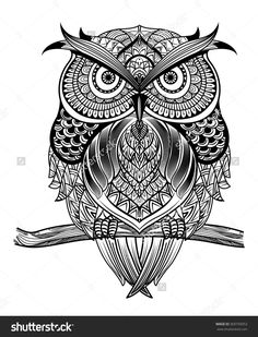 stock-vector-vector-hand-drawn-owl-sitting-on-branch-black-and-white-zentangle-art-ethnic-patterned-369750053.jpg (1221×1600)