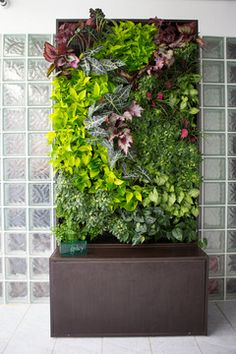 "Auto Irrigated, pre built living wall unit. Easy set up, all you do is add 4"" potted plants and it waters itself   Vertical Wall Planters 