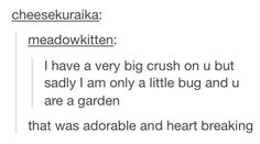 I LOVE LITTLE BUGS AND I'M SURE THERE ARE OTHERS WHO LOVE LITTLE BUGS