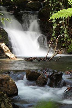 beautiful waterfall in the rainforest, Rincon de la Vieja, Costa Rica
