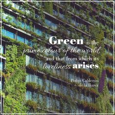 Spring: the season that brings green and all its beauty back into our lives.