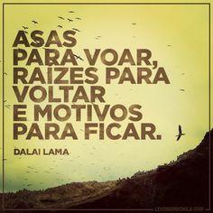 Asas para voar, raizes para voltar e motivos para ficar. - Dalai Lama